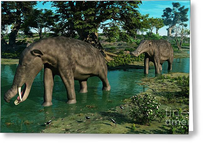 A Pair Of Platybelodon Grazing Greeting Card by Walter Myers