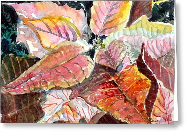 Peach Drawings Greeting Cards - A Peach of a Poinsettia Greeting Card by Mindy Newman