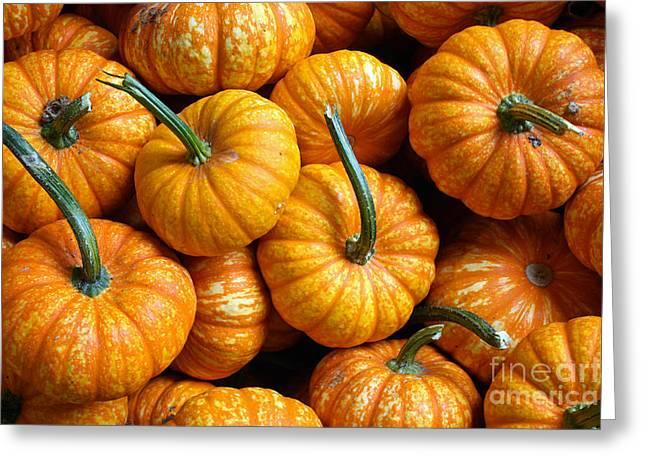 A Peck Of Pumpkins Greeting Card by Kami McKeon