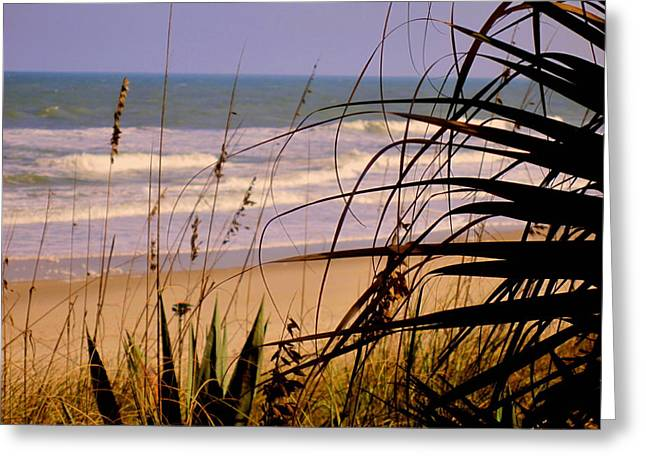 Sea Grass In The Sand Greeting Cards - A peek at the shore Greeting Card by Susanne Van Hulst