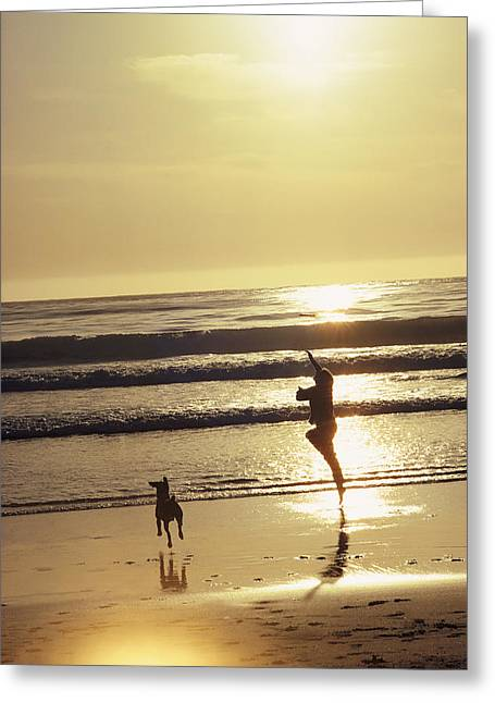 Beaches In Monterey Greeting Cards - A Pet Dog Runs With Its Owner Greeting Card by Bill Curtsinger