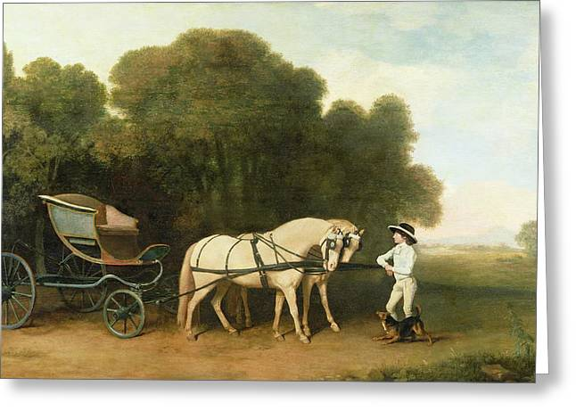 Charging Horses Greeting Cards - A Phaeton with a Pair of Cream Ponies in the Charge of a Stable-Lad Greeting Card by George Stubbs