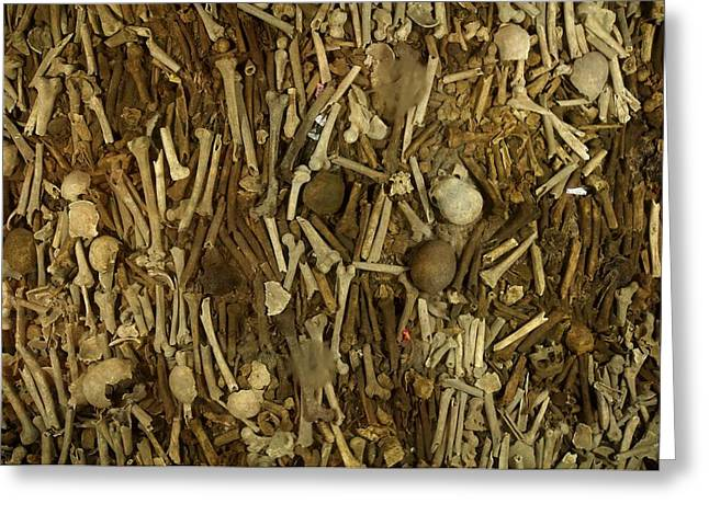 Bone Pile Greeting Cards - A Pile Of Human Bones In A Churchs Greeting Card by Jim Richardson