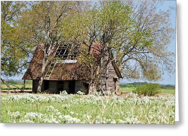 A Place Called Home Greeting Card by Lisa Moore
