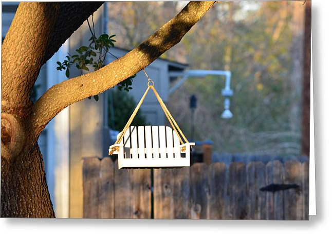 Perching Greeting Cards - A Place to Perch Greeting Card by Nikki Marie Smith