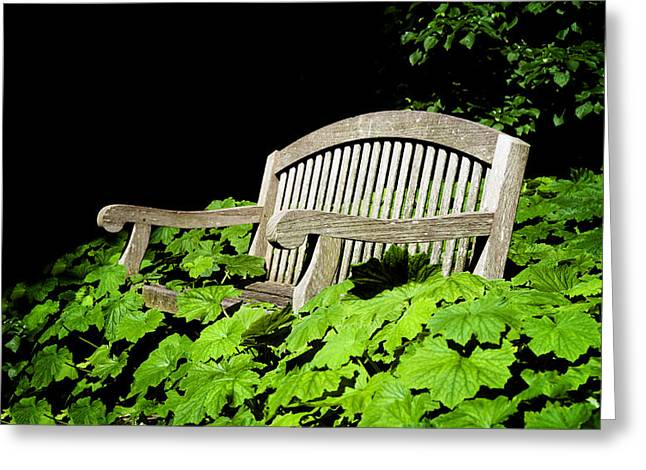 A Place To Rest Greeting Card by Bill Cannon
