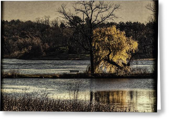 Willow Lake Greeting Cards - A Place To Think Greeting Card by Thomas Young