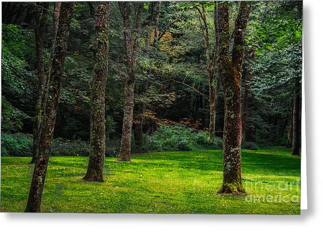 A Place To Unwind Greeting Card by Scott Hervieux