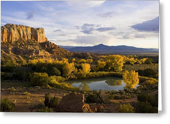 Jemez Mountains Greeting Cards - A Pond Is Seen Next To Kitchen Mesa Greeting Card by Ralph Lee Hopkins