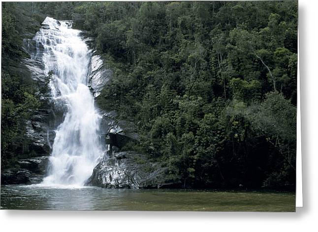 Pristine Coastal Forests Greeting Cards - A Pristine Waterfall Cascades Greeting Card by Jason Edwards
