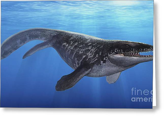 Sea Life Digital Art Greeting Cards - A Prognathodon Saturator Swimming Greeting Card by Sergey Krasovskiy