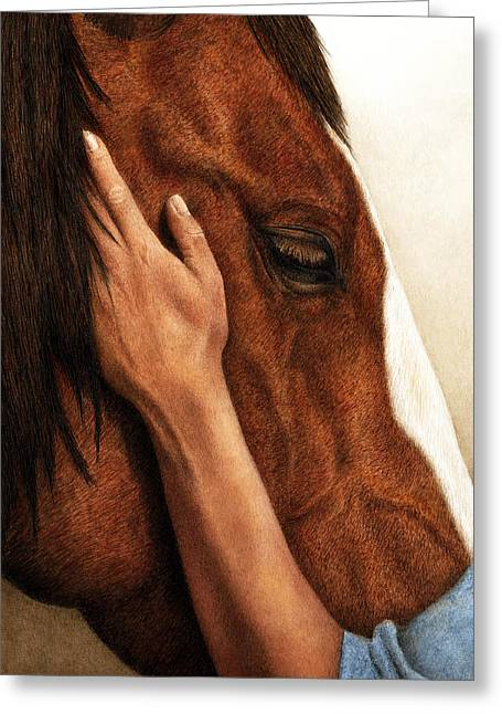 Horse And Rider Greeting Cards - A Quiet Moment Greeting Card by Pat Erickson