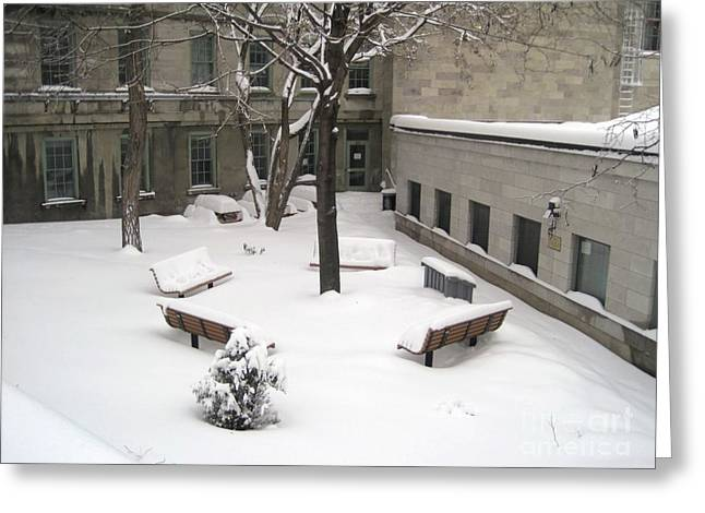 Montreal Winter Scenes Greeting Cards - A Quiet Place Greeting Card by Reb Frost