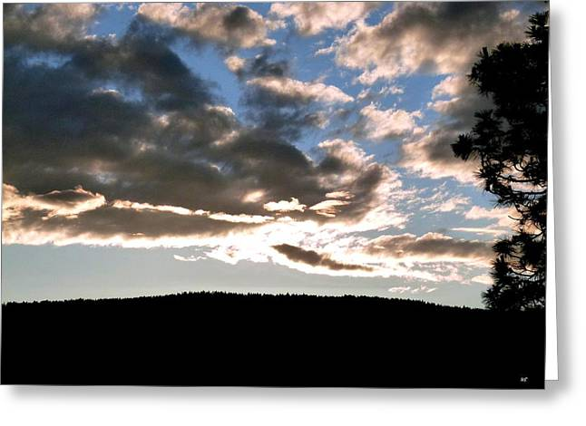 Silhouette Of Tree Greeting Cards - A Radiant Moment Greeting Card by Will Borden