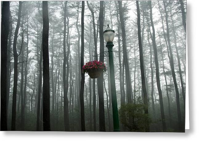 Hershey Greeting Cards - A Rainstorm In Hershey, Pa Greeting Card by Joel Sartore