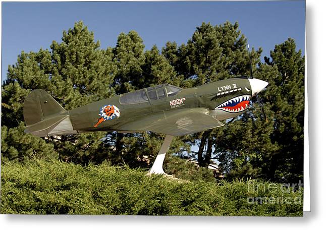 Model Aircraft Greeting Cards - A Replica Of The Curtiss P-40e Warhawk Greeting Card by Stocktrek Images