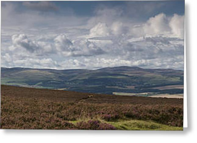 Roadway Greeting Cards - A Road Leading Into The Distance Greeting Card by John Short
