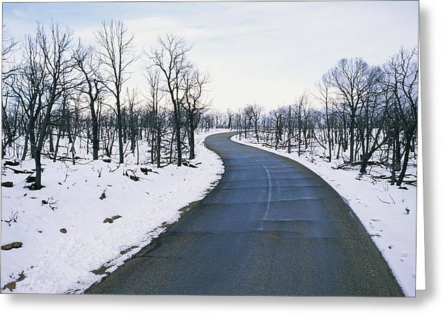 A Road Winds Through A Fire-damaged Greeting Card by Rich Reid
