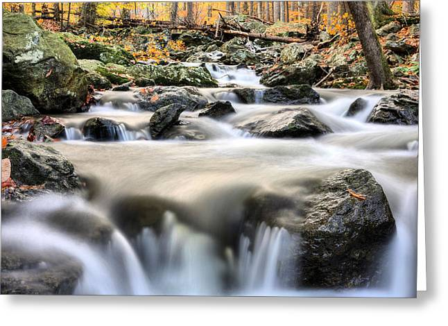 A Rocky Road Greeting Card by JC Findley