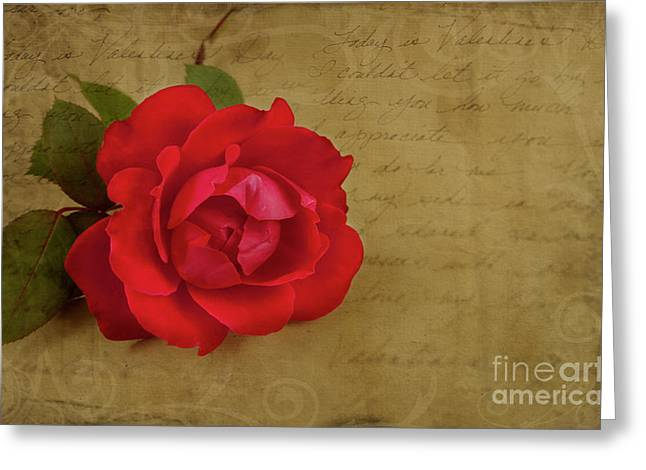 Rose Photos Greeting Cards - A Rose by Any Other Name Greeting Card by Lena Auxier