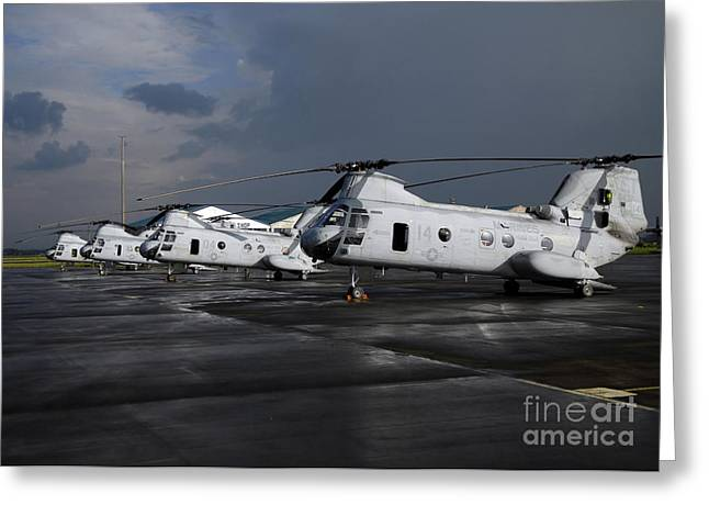 Ch-46 Greeting Cards - A Row Of Ch-46 Sea Knights Sit Greeting Card by Stocktrek Images