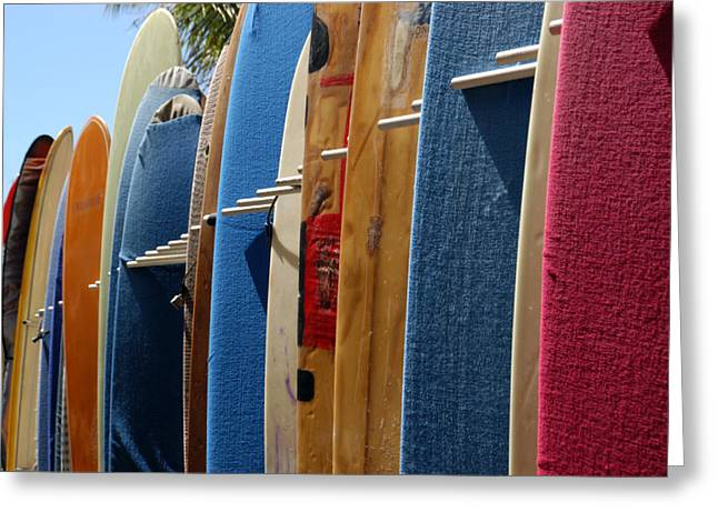 Long Boards Greeting Cards - A Row Of Surfboards Greeting Card by Stacy Gold