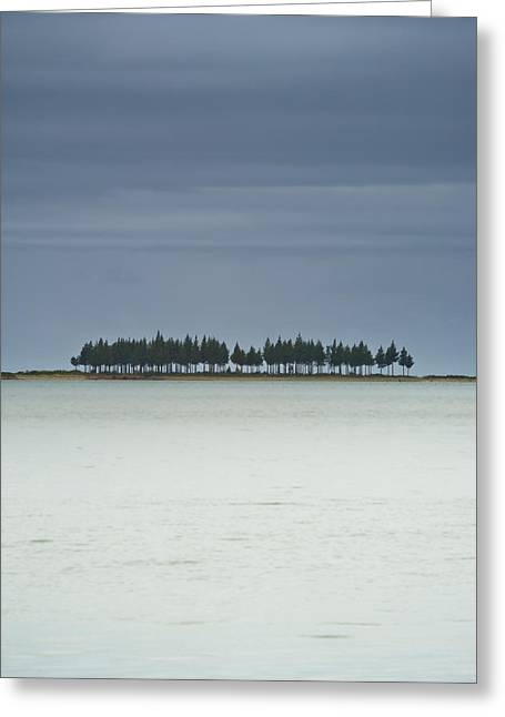 People Greeting Cards - A Row Of Trees Along The Coast Farewell Greeting Card by David DuChemin
