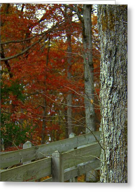 Indiana Autumn Greeting Cards - A Safe Path Greeting Card by Ed Smith