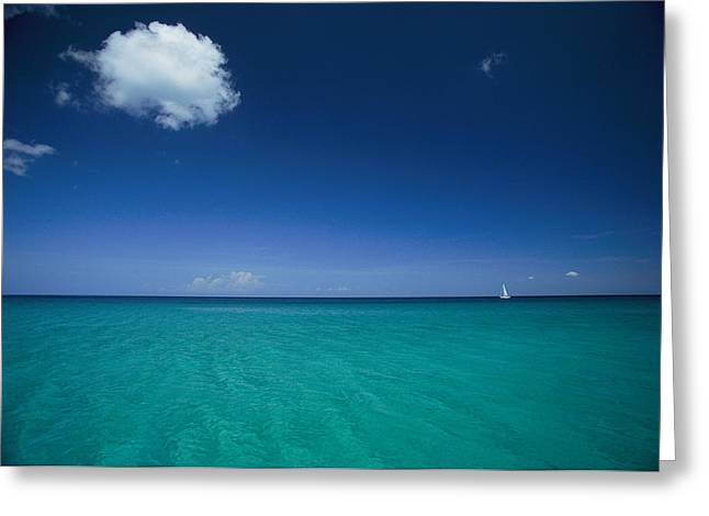 Reserve Greeting Cards - A Sailboat Plies A Clear Blue Sea Greeting Card by Steve Winter