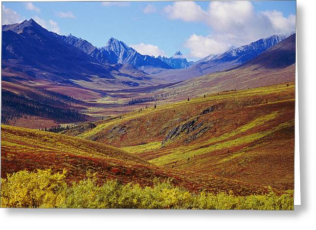 Tombstone Mountain Greeting Cards - A Scenic View Of Tombstone Mountains Greeting Card by Paul Nicklen
