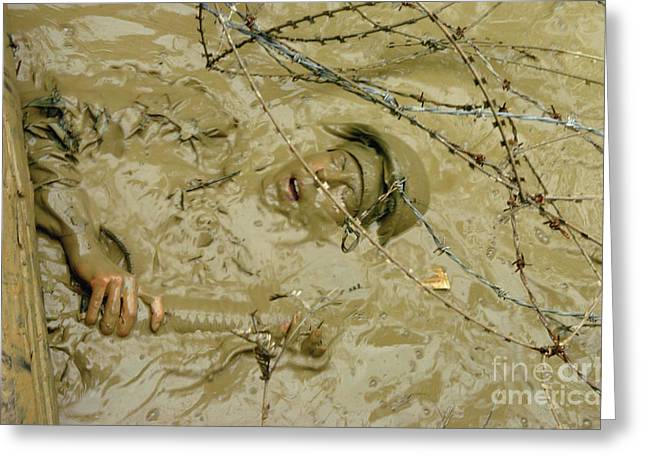 A Seabee Emerges From Muddy Water Greeting Card by Stocktrek Images