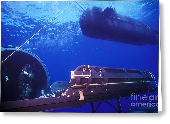 Undersea Photography Greeting Cards - A Seal Delivery Vehicle Hovers Greeting Card by Michael Wood