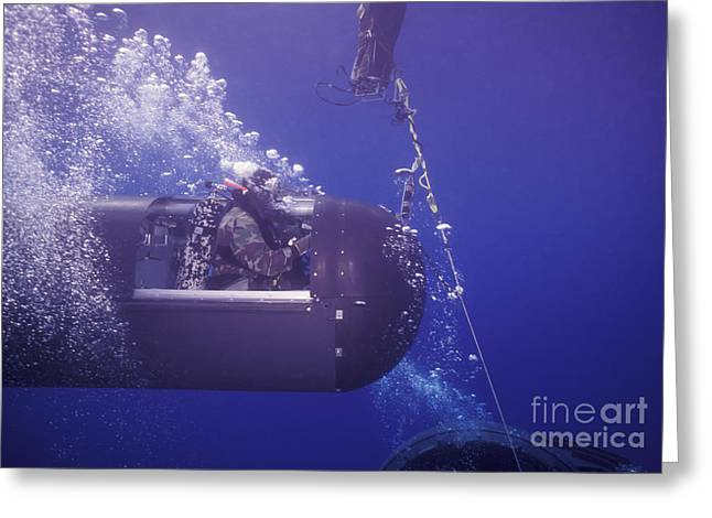 Special Delivery Greeting Cards - A Seal Delivery Vehicle On Tether Greeting Card by Michael Wood
