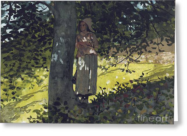 Undergrowth Greeting Cards - A Shady Spot Greeting Card by Winslow Homer