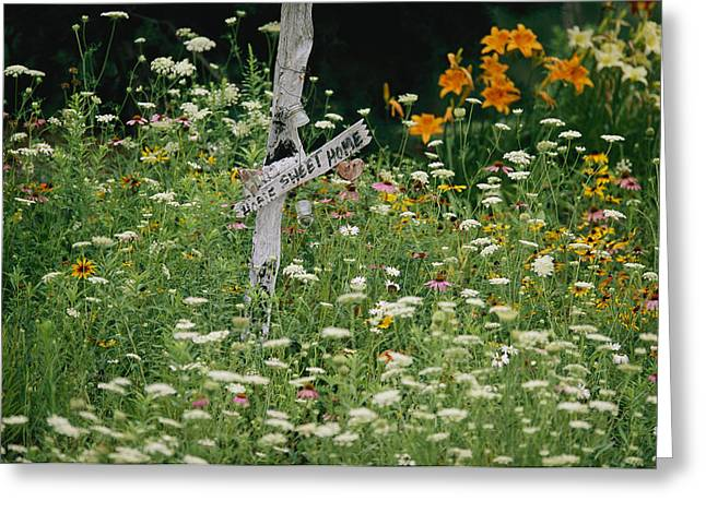 Sign Writing Greeting Cards - A Sign Surrounded By Wild Flowers Greeting Card by Joel Sartore