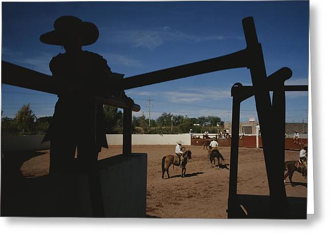 Cowgirl And Cowboy Greeting Cards - A Silhouetted Cowboy Watches Riders Greeting Card by Raul Touzon