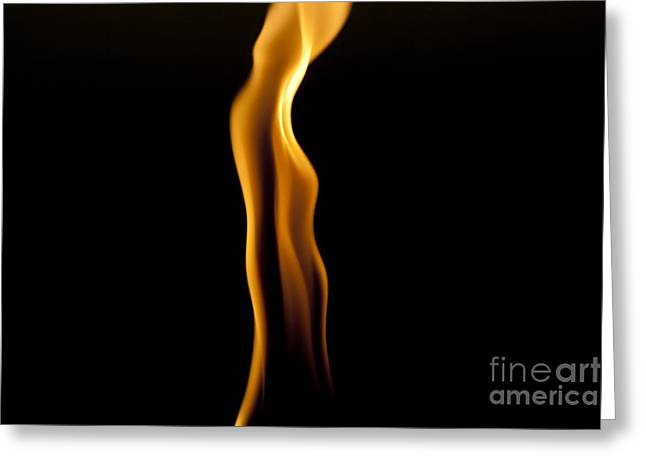 Firestorm Greeting Cards - A Single Flame Greeting Card by Darcy Michaelchuk