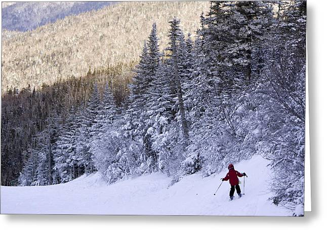 Alpine Skiing Greeting Cards - A Six Year Old Boy Alpine Skiing Greeting Card by Tim Laman