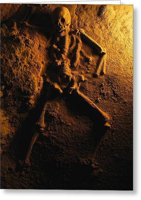 Antiquities And Artifacts Greeting Cards - A Skeleton From A Human Sacrifice Turns Greeting Card by Stephen Alvarez