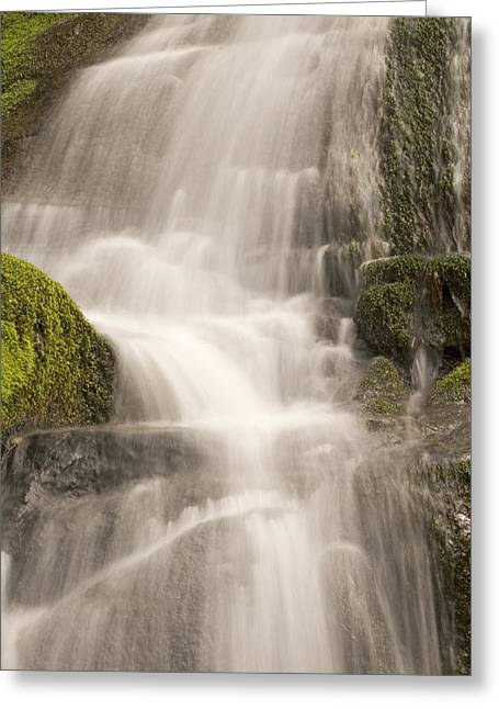 Water Over Rock Greeting Cards - A Small Waterfall In Late Spring Rushes Greeting Card by Phil Schermeister