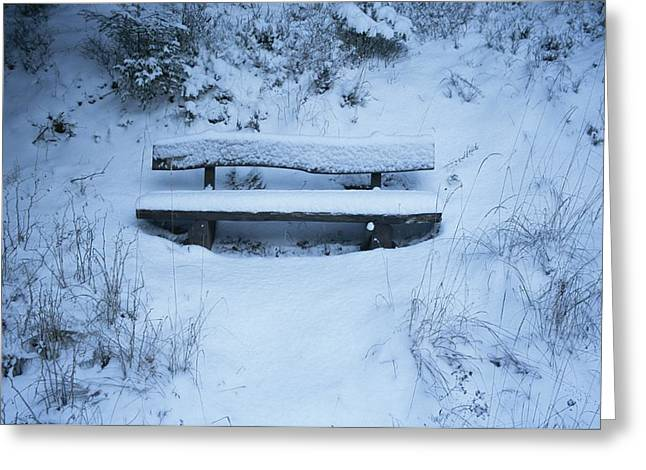 Benches And Chairs Greeting Cards - A snow-covered bench in Greeting Card by Taylor S. Kennedy