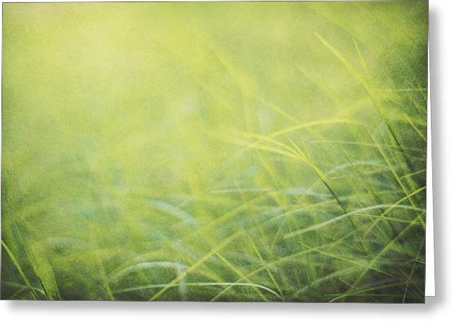 Chartreuse Greeting Cards - A Soft Place to Fall Greeting Card by Amy Tyler