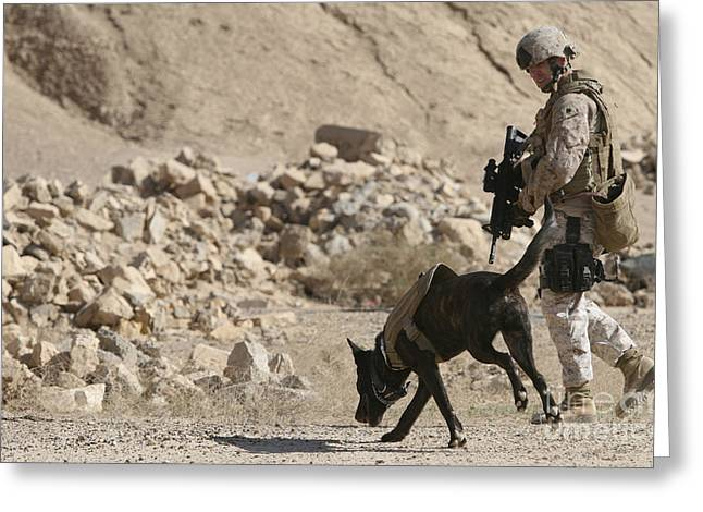 Recently Sold -  - Working Dog Greeting Cards - A Soldier And His Dog Search An Area Greeting Card by Stocktrek Images