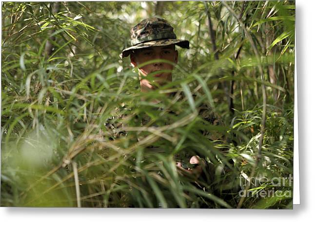 Jungle Warfare Greeting Cards - A Soldier Pushes Through Dense Greeting Card by Stocktrek Images
