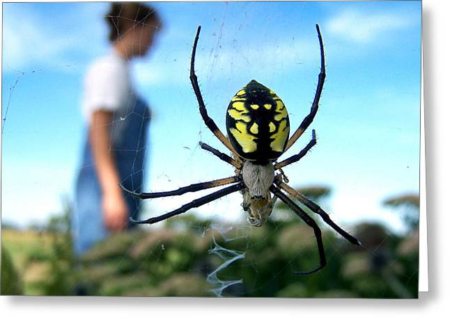 Big Spider Greeting Cards - A Spider Beside Her Greeting Card by Bill Pevlor