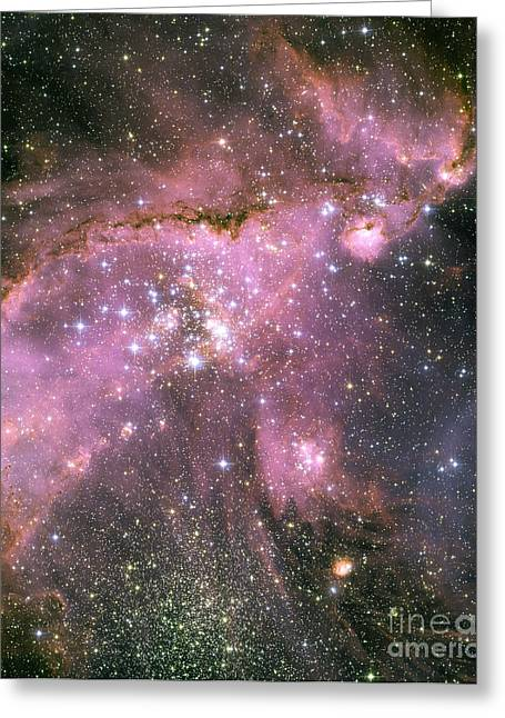 Starforming Greeting Cards - A Star-forming Region In The Small Greeting Card by Stocktrek Images