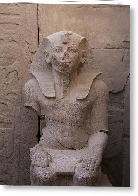 Pharaoh Greeting Cards - A Statue Of A Young King In The Classic Greeting Card by Taylor S. Kennedy