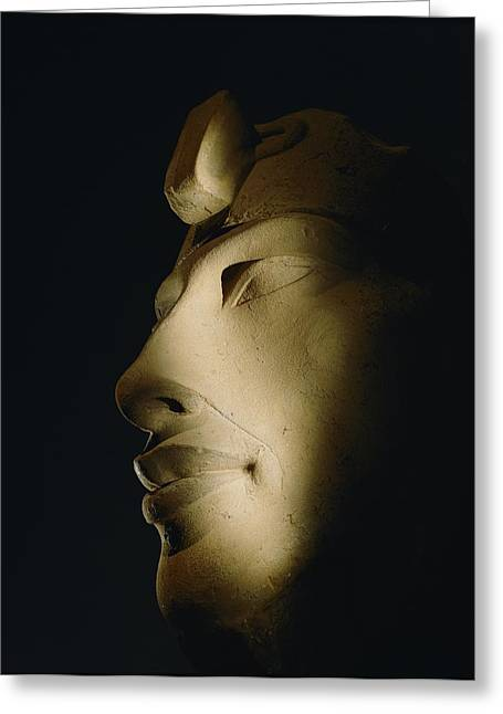 Pharaoh Greeting Cards - A Statue Of Akhenaten Is Lost Greeting Card by Kenneth Garrett