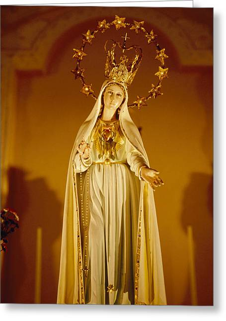 A Statue Of The Virgin Mary Greeting Card by Justin Guariglia