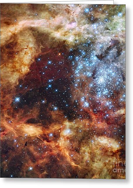 Colorful Cloud Formations Greeting Cards - A Stellar Nursery Known As R136 Greeting Card by Stocktrek Images